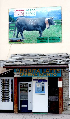 cow vending machine and cobra