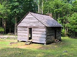 alex cole cabin