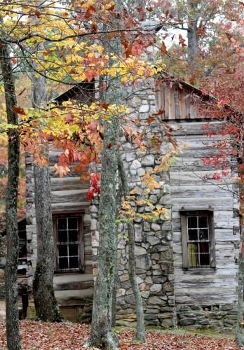 Cabin In Fall X