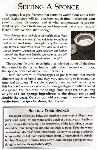 setting your sponge