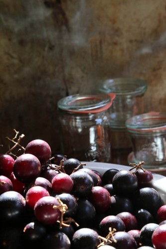 1 Muscadines2 333x500 Muscadine merriment + a perky salad for your Thanksgiving table