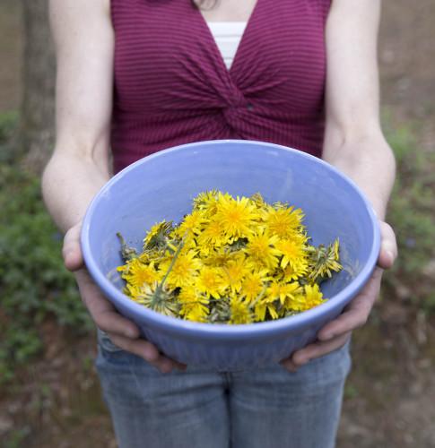 13 485x500 Dandelion Blossom Cordial Spritz