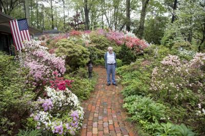 dad in dad's garden