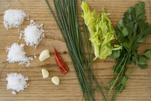 celery herb garlic salt ingredients 500x335 Be popular, gift homemade Garlic Salt blends