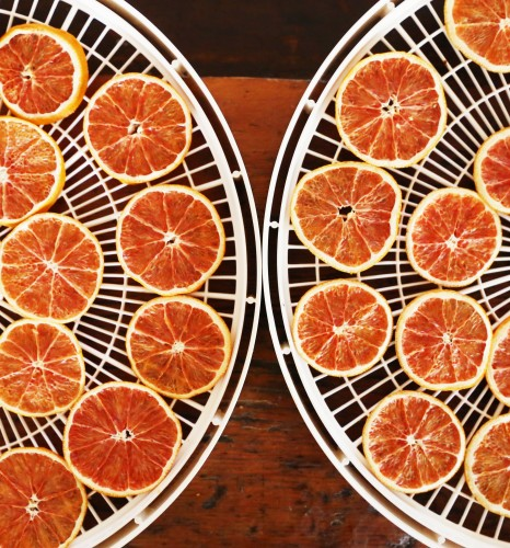 oranges dehydrator 466x500 Chocolate Orange Chili Picnic Popcorn