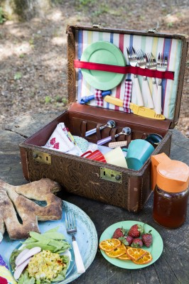 vintage suitcase picnic basket picnic color