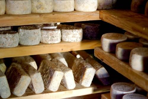roberta's cheese