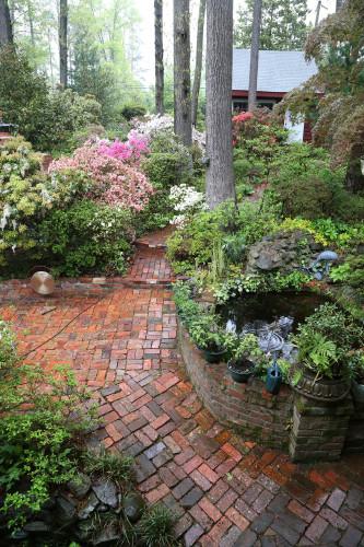dad's garden 2