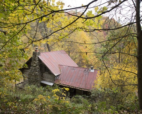 cabin in the middle of fall