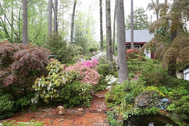 dad's garden in May